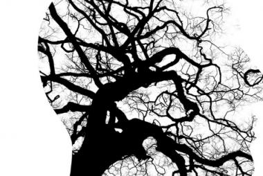 Profil de visage rempli d'une image d'un arbre