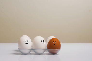 3 oeufs blancs et un oeuf marron se regardent